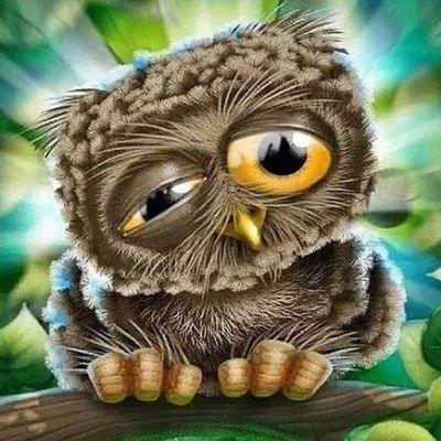 Рисунки совы красками смешные и веселые (27)