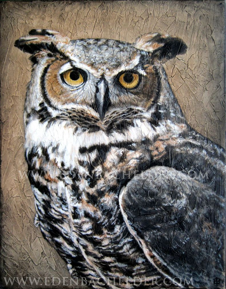 Рисунки совы красками смешные и веселые (7)