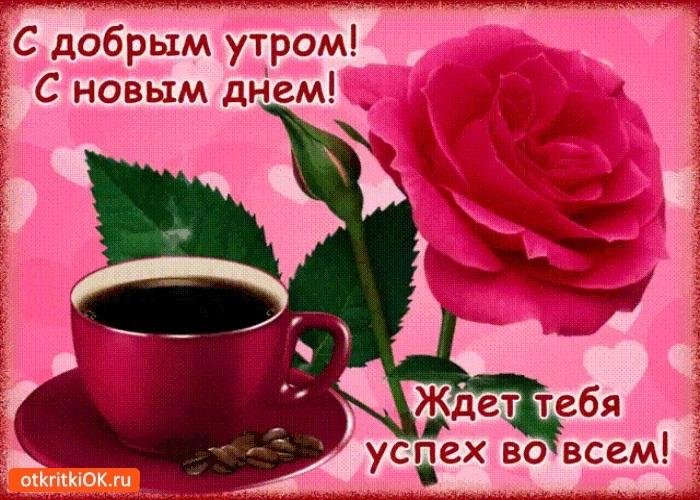 Самые красивые картинки с добрым утром и новым днем004