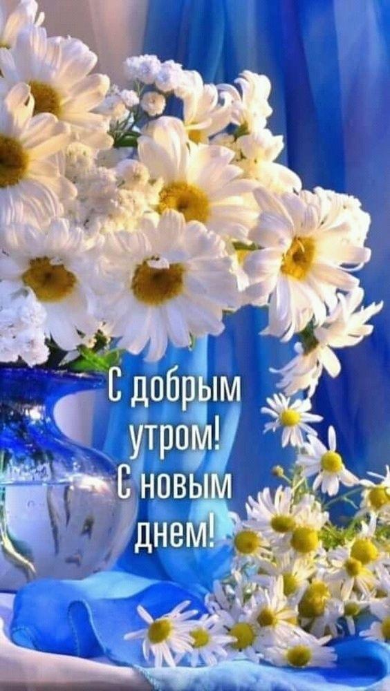 Самые красивые картинки с добрым утром и новым днем011