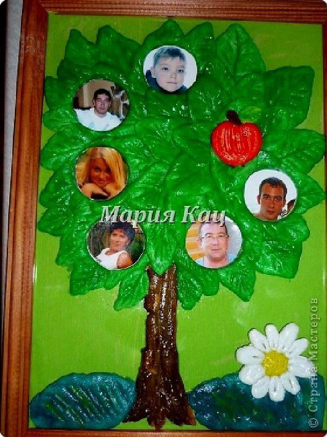Семейное древо фото в садик003