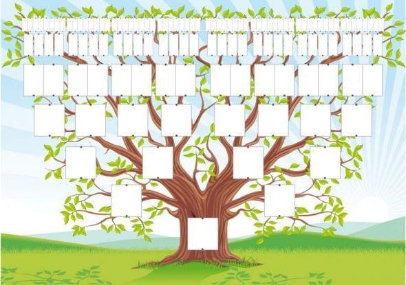 Семейное древо фото в садик011