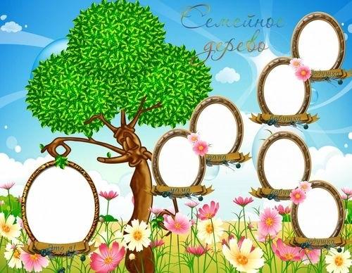 Семейное древо фото в садик024