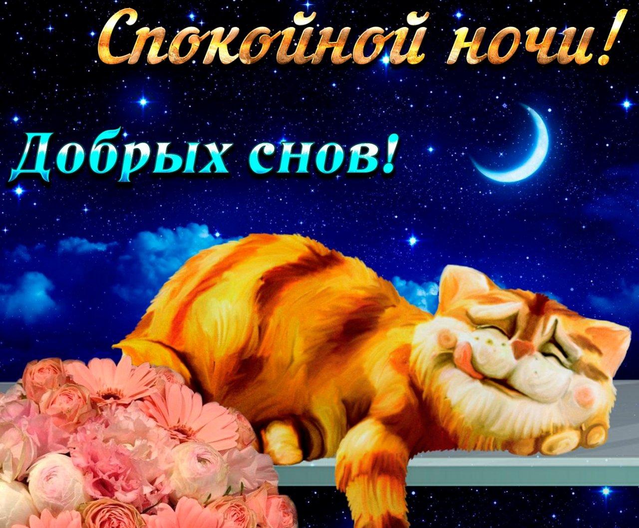 Сладких снов ангел мой картинки и открытки (12)