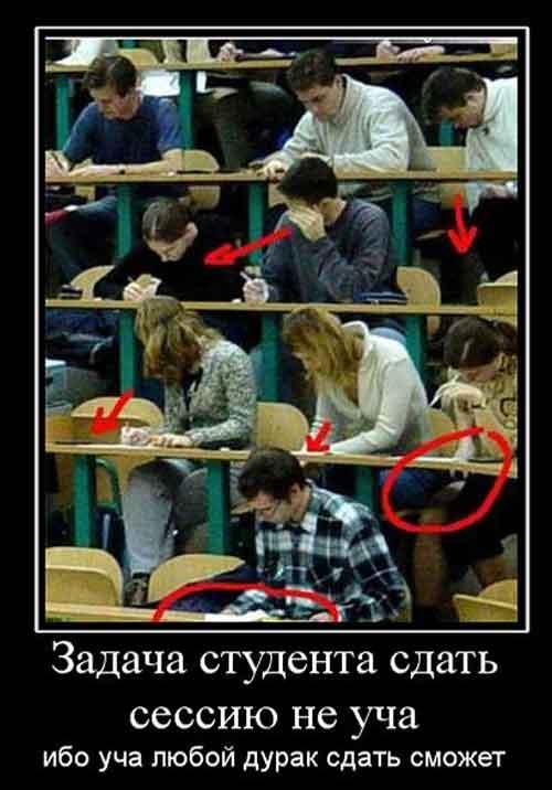Смешные и прикольные картинки про студентов (14)