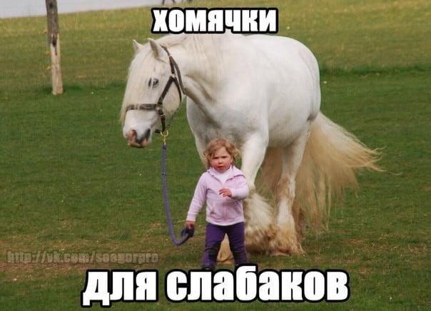 Смешные картинки про детей с надписью - коллекция 20 фото (6)
