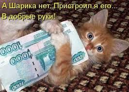 Смешные картинки про животных с надписью для ржача (24)