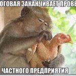 Смешные картинки про животных с надписью для ржача