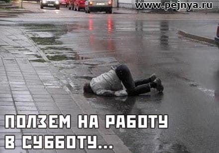 Смешные картинки про работу в субботу014