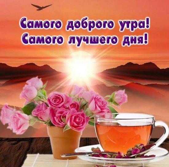 Смешные картинки с добрым утром и хорошего дня012
