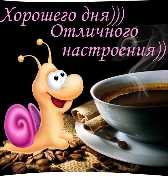 Смешные картинки с добрым утром и хорошего дня014