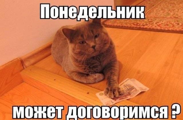 Смешные картинки с надписями про воскресенье015