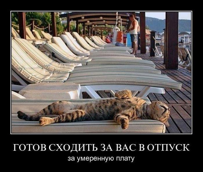 Смешные картинки c отпуска для настроения (13)