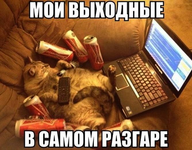 Смешные мемы про воскресенье016