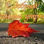 Спокойной ночи осенью — картинки и открытки