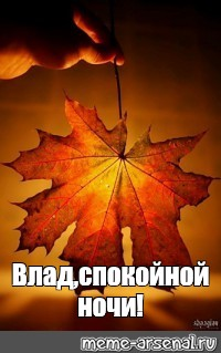Спокойной ночи осенью - картинки и открытки (11)