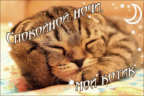 Спокойной ночи осенью картинки и открытки (15)