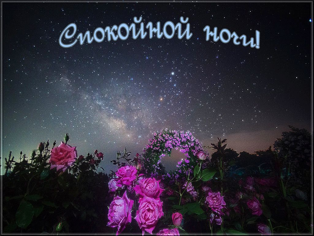 Доброй ночи дорогие картинки