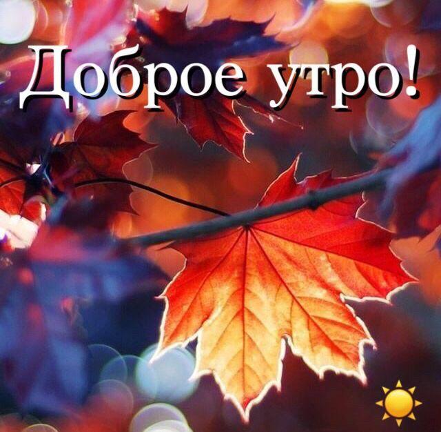 Спокойной ночи осенью - картинки и открытки (2)
