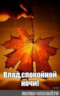Спокойной ночи осенью картинки и открытки (3)