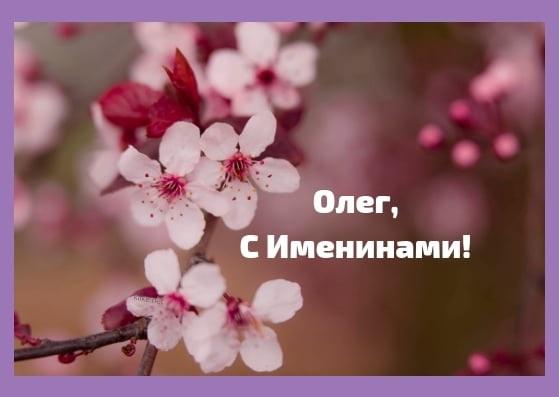 С днем ангела Олега 3 октября открытки и картинки010