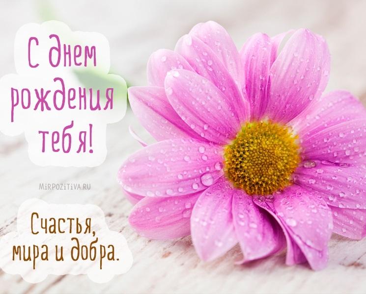 С днем рождения цветы картинки прикольные012