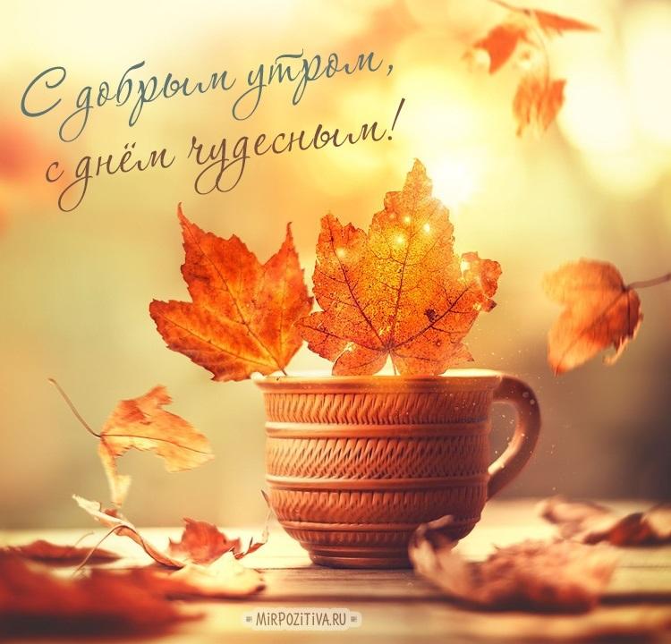 С добрым теплым утром октября картинки и открытки018