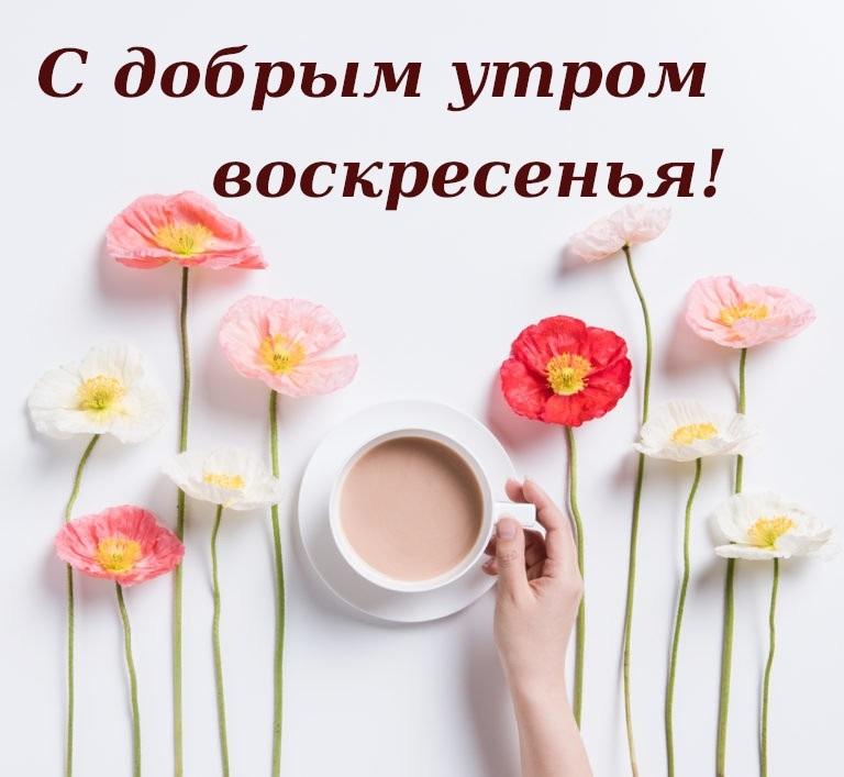 С добрым утром в воскресенье картинки016
