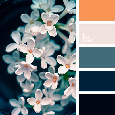 Теплый оттенок синего цвета - картинки (10)