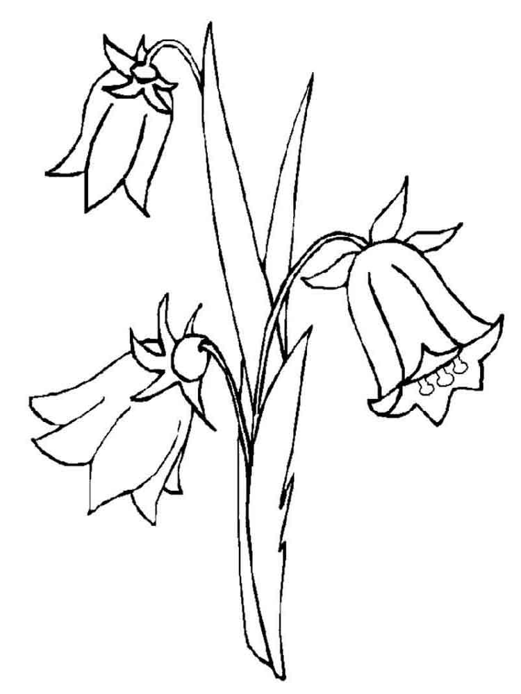 Трафарет колокольчики цветы - картинки (11)