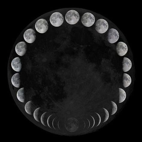 Удивительные картинки все фазы луны (15)