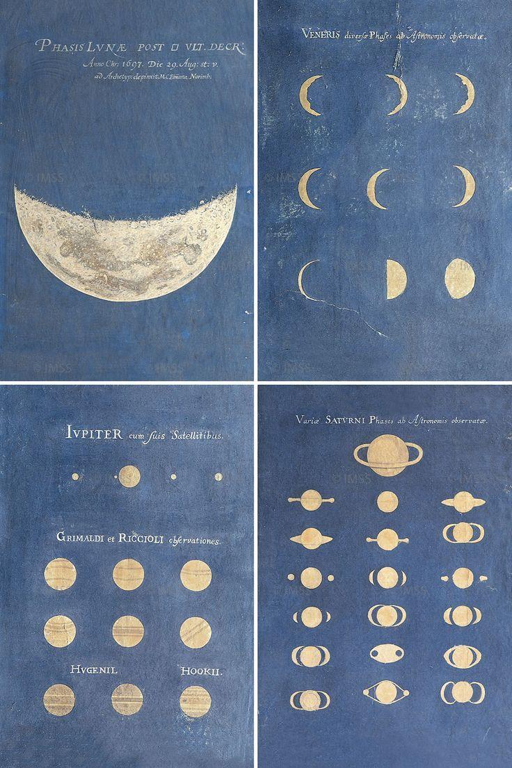 Удивительные картинки все фазы луны (26)