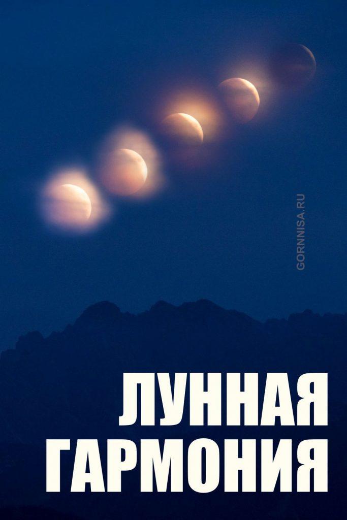 Удивительные картинки все фазы луны (31)