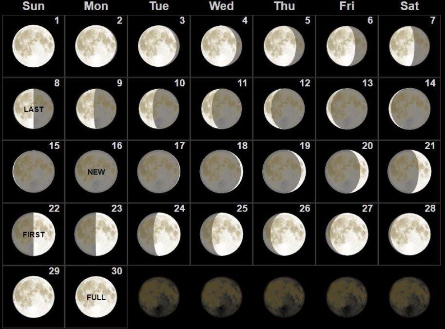 Удивительные картинки все фазы луны (4)