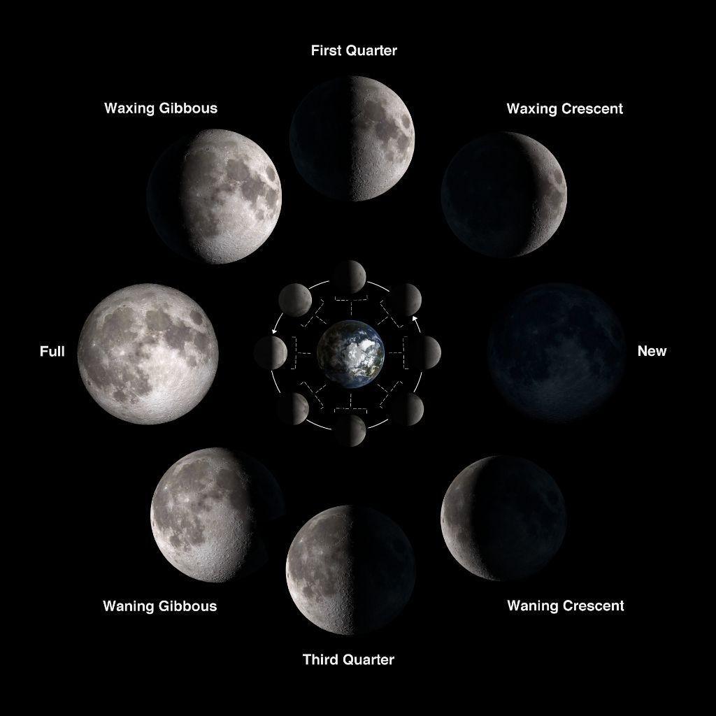 Удивительные картинки все фазы луны (6)
