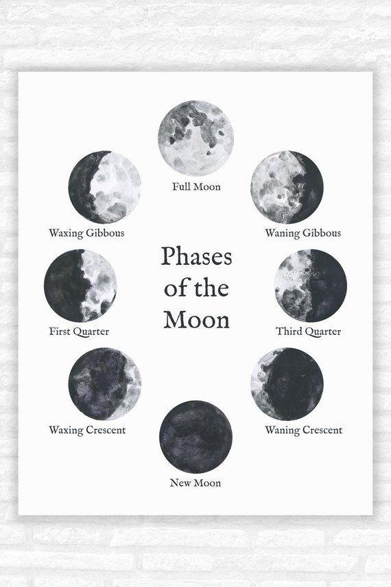 Удивительные картинки все фазы луны (8)