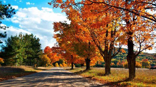 Удивительные картинки на рабочий стол октябрь осень (13)