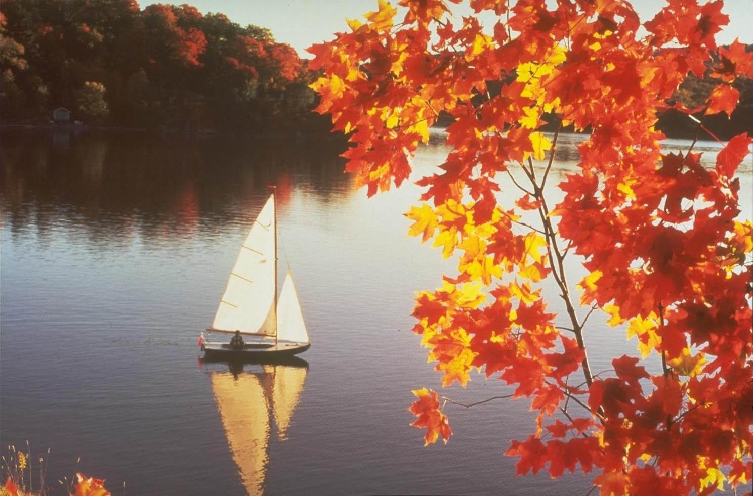 Удивительные картинки на рабочий стол октябрь осень (4)