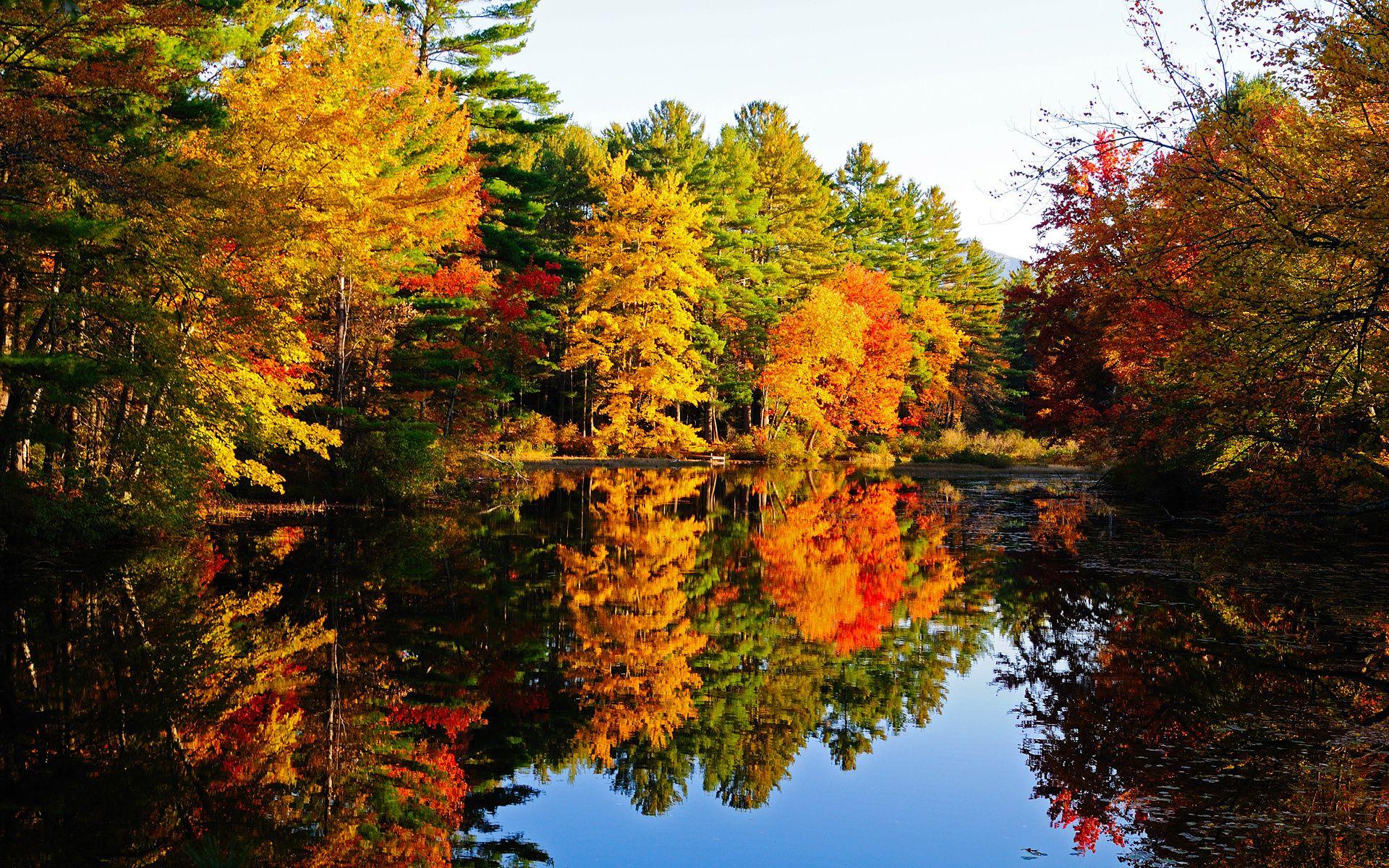 Удивительные картинки на рабочий стол октябрь осень (6)