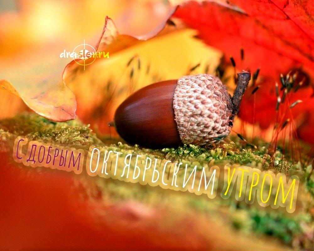 Удивительные картинки октябрьское утро пожелания001
