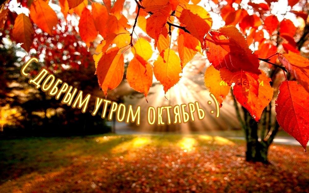 Удивительные картинки октябрьское утро пожелания015