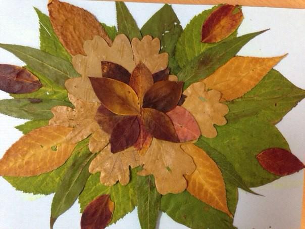 Удивительные коллажи из осенних листьев (11)