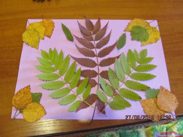 Удивительные коллажи из осенних листьев (13)