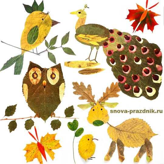 Удивительные коллажи из осенних листьев (24)