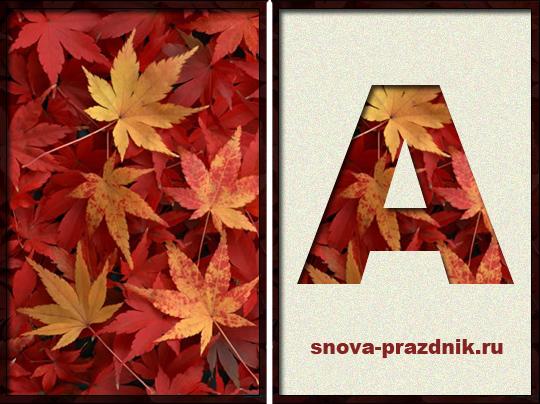 Удивительные коллажи из осенних листьев (28)