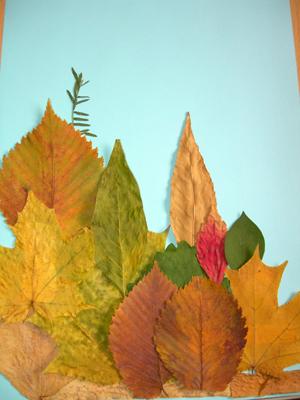 Удивительные коллажи из осенних листьев (34)