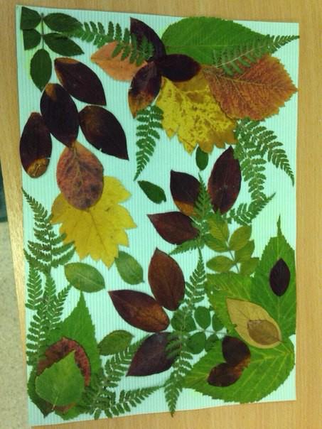 Удивительные коллажи из осенних листьев (9)