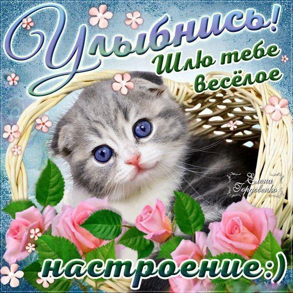 Улыбнись и не грусти картинки и открытки011