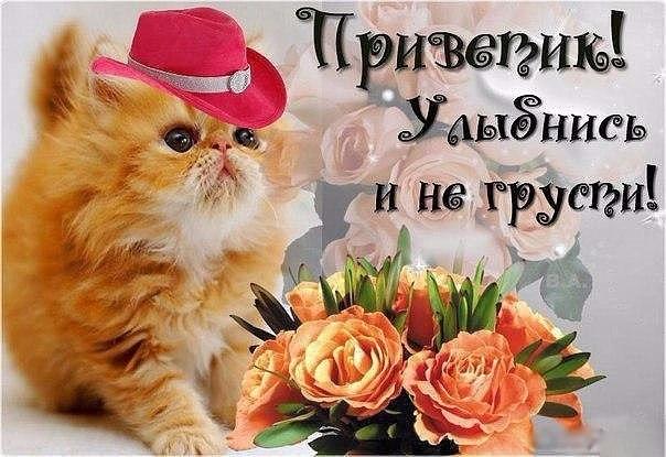 Улыбнись и не грусти картинки и открытки017