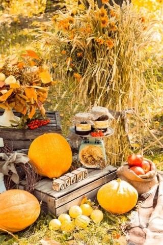 Фотопроект осень для детей025